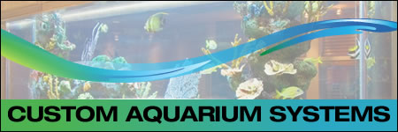 Photo Gallery - Custom Aquarium Systems