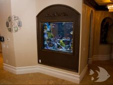 Photo Gallery - Custom Aquarium Systems